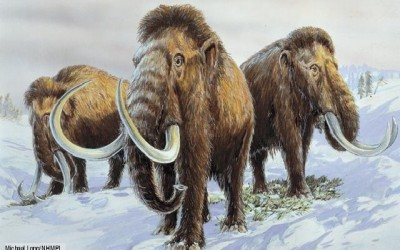Extinct Animals That Science Could Bring Back From The dead