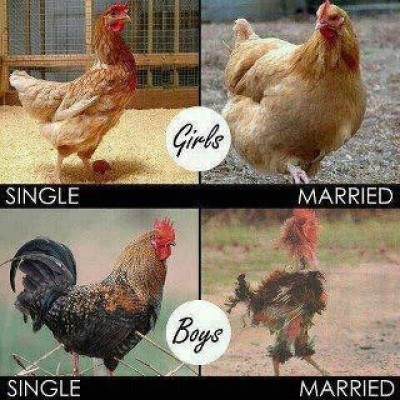 Funny before and after marriage pics