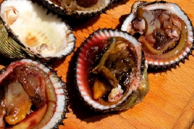 Most Gross Foods In The World