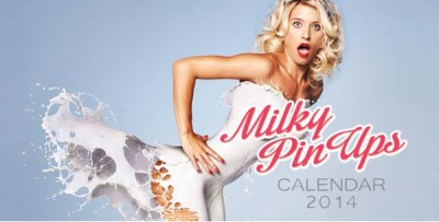 Craziest calendars for 2014