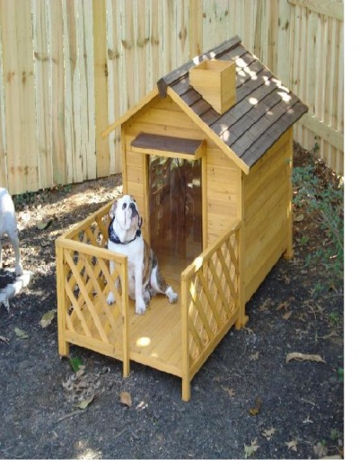 Dog house with patio