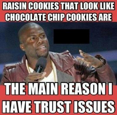 Raisin Cookies!