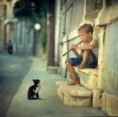 This Little Boy Playing Flute To A Cat