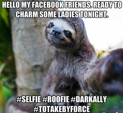 This Sloth Selfie