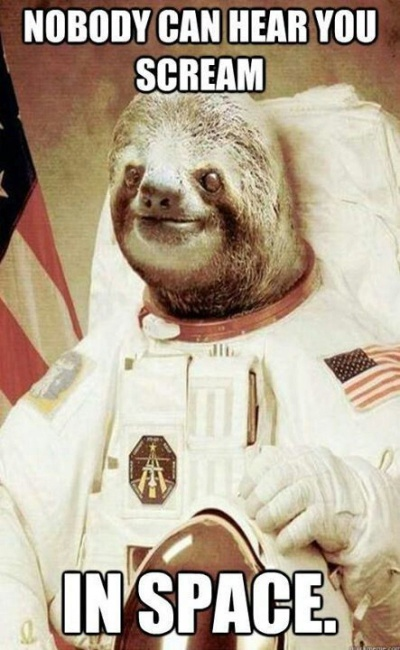 This Space Sloth
