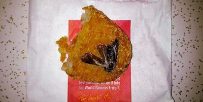 Cockroach in the Hash Browns.